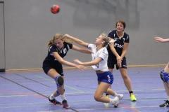 Handball-20191103003