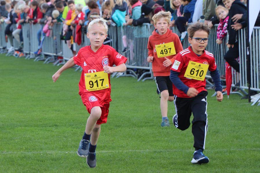 Herbslauf-3-km-Kinder-2019028