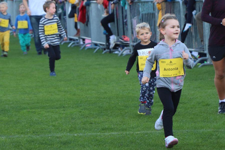 Herbslauf-3-km-Kinder-2019064