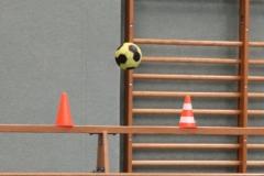 Tag-des-Handballs-20191026005
