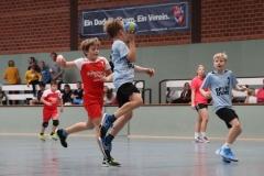 VolleyHandbball-E-Jgd20191110001