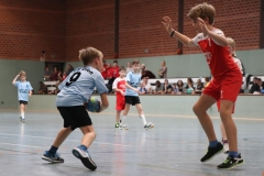 VolleyHandbball-E-Jgd20191110002