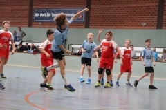 VolleyHandbball-E-Jgd20191110005