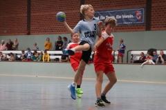 VolleyHandbball-E-Jgd20191110008