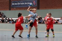 VolleyHandbball-E-Jgd20191110010