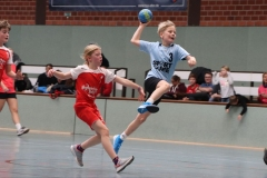 VolleyHandbball-E-Jgd20191110011