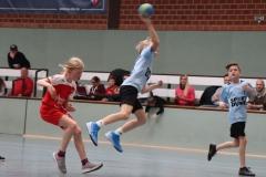 VolleyHandbball-E-Jgd20191110012