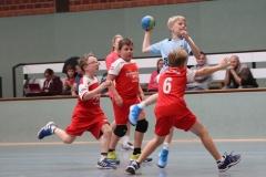 VolleyHandbball-E-Jgd20191110015
