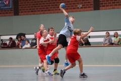VolleyHandbball-E-Jgd20191110016