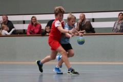VolleyHandbball-E-Jgd20191110020