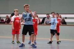 VolleyHandbball-E-Jgd20191110021