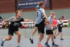 VolleyHandbball-E-Jgd20191110024