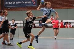VolleyHandbball-E-Jgd20191110026
