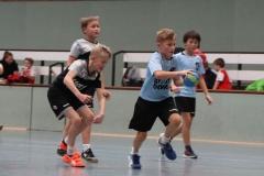 VolleyHandbball-E-Jgd20191110027