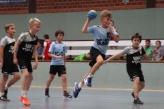 VolleyHandbball-E-Jgd20191110028