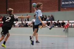 VolleyHandbball-E-Jgd20191110029