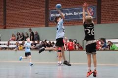 VolleyHandbball-E-Jgd20191110031