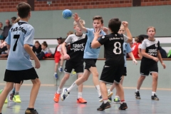 VolleyHandbball-E-Jgd20191110032
