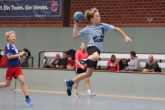 VolleyHandbball-E-Jgd20191110034