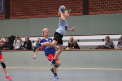 VolleyHandbball-E-Jgd20191110037