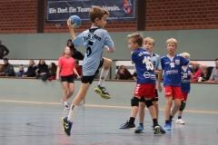 VolleyHandbball-E-Jgd20191110038