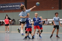 VolleyHandbball-E-Jgd20191110039