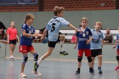 VolleyHandbball-E-Jgd20191110040