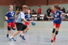 VolleyHandbball-E-Jgd20191110041