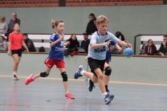 VolleyHandbball-E-Jgd20191110045