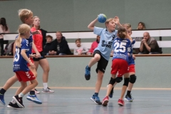 VolleyHandbball-E-Jgd20191110046