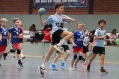 VolleyHandbball-E-Jgd20191110048