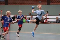 VolleyHandbball-E-Jgd20191110049