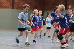 VolleyHandbball-E-Jgd20191110051