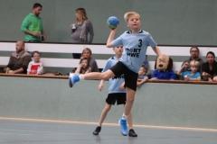 VolleyHandbball-E-Jgd20191110052