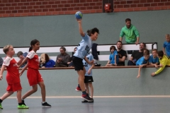 VolleyHandbball-E-Jgd20191110053