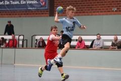 VolleyHandbball-E-Jgd20191110057