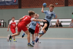 VolleyHandbball-E-Jgd20191110059