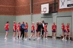 Handball003