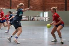 Handball012