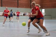 Handball013