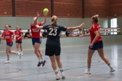 Handball014