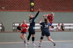 Handball019