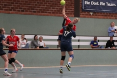 Handball037