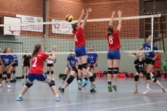 Volleyt007