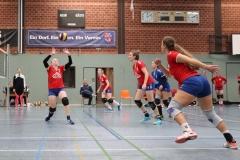 Volleyt020