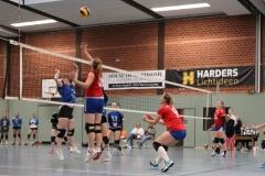 Volleyt029