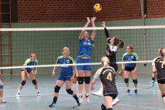 Volleyball-2019082502