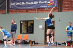 Volleyball-2019082510