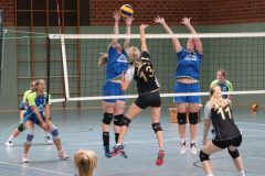 Volleyball-2019082514
