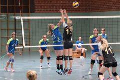 Volleyball-2019082515